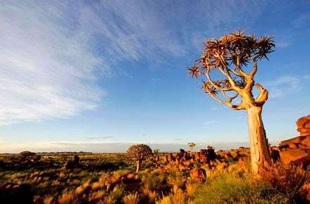 Südafrika: Luxus und Safari in voller Ruhe