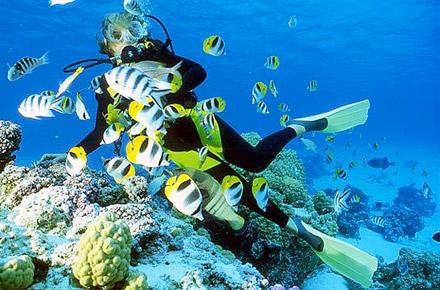 Un atollo alle Maldive, alle Seychelles o in Polinesia