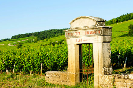 A weekend of wine trails
