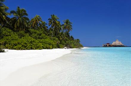 maldives paradis d 39 atolls les plus belles plages d 39 h tel. Black Bedroom Furniture Sets. Home Design Ideas