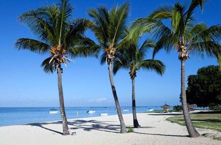 ile maurice la r f rence les plus belles plages d 39 h tel. Black Bedroom Furniture Sets. Home Design Ideas