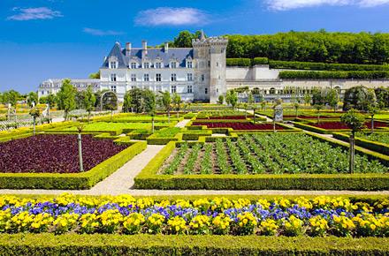 Il giardino del castello di Villandry
