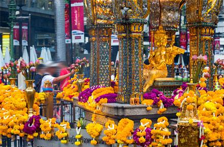 Bangkok pratica