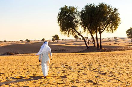 Qasar Al Sahab, Abu Dhabi