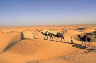 Tunisian south