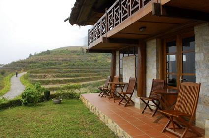 Des panneaux solaires dans les plantations de thé