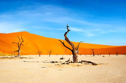 Namibia: dawn till dusk