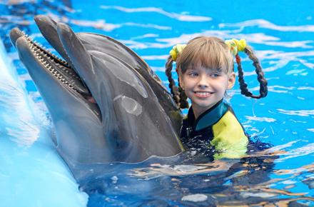 Nager avec les dauphins en r publique dominicaine dix for Nager avec les dauphins nice