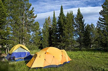 Drei dänische Campingplätze an der Spitze