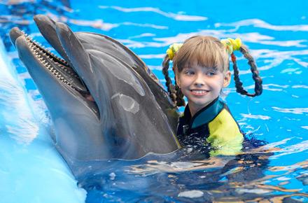 nuotare con i delfini in repubblica dominicana farsi il bagno ai quattro angoli del mondo