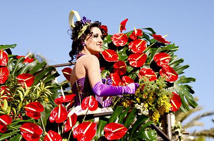 Blumenfeierei in Nizza