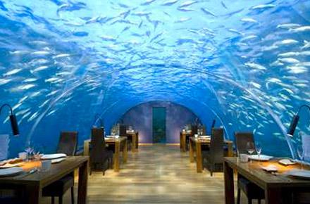 Under the sea, the Maldives