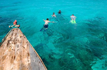 Zanzibar la laguna di mnemba diving i nostri consigli - Bagno con gli squali sudafrica ...